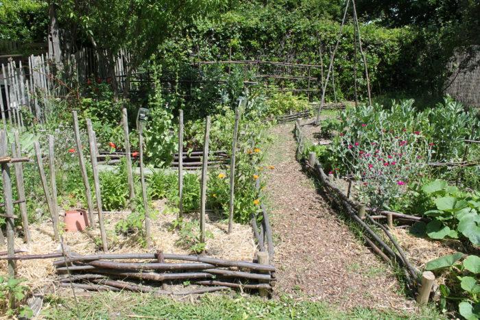 Jardin-Botanique-Petit-potager