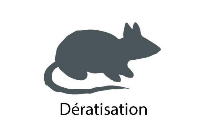 Dératisation Illustration